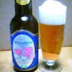 大島地ビールピルスナー